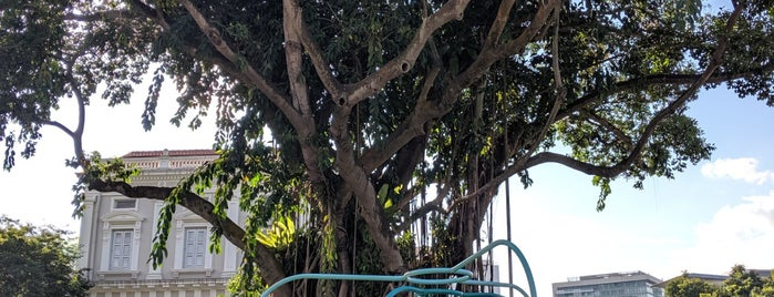 Banyan Tree is one of Singapore.