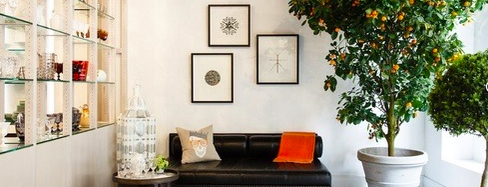 Jung Lee is one of New York City Home Goods 38.