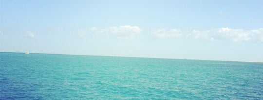 Red Sea is one of World favourites.