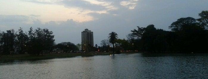 ESALQ - Pavilhão de Engenharia is one of Tempat yang Disukai Jose luciano.