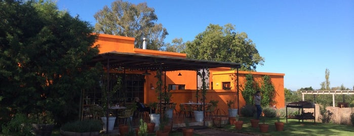 Bodega Campo Tinto is one of Lugares favoritos de Janete.