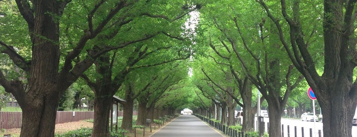 Meiji Jingu Gaien is one of JPN.
