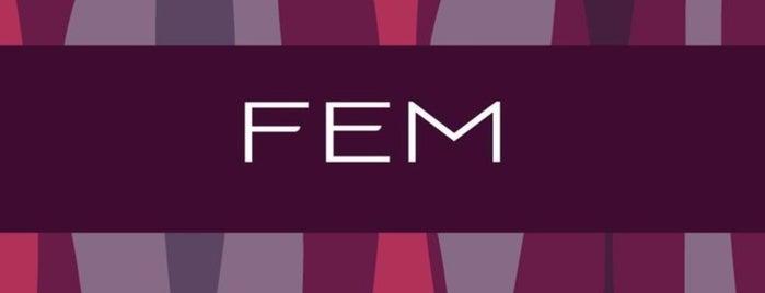 FEM Dermatologia, Depilação & Laser is one of Doctors.