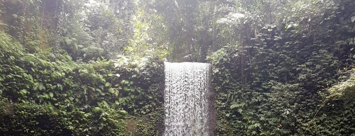 Tibumana Waterfal is one of Indonesia.