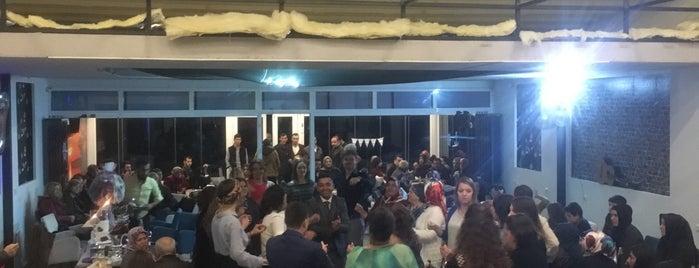 Plak Cafe & Bar is one of Lieux qui ont plu à Osman.