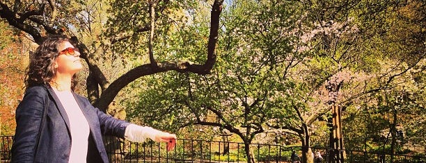 Riverside Park - 91st Street Garden is one of NYC Neighborhoods.