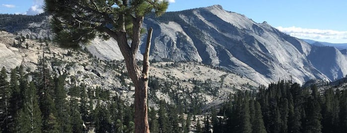 Olmsted Point is one of 10 - Yosemite.