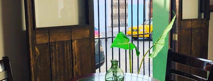 Cafe La Antigua is one of Viiry'in Beğendiği Mekanlar.