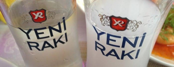 Artı Yol Rakı&Balık Evi is one of icki.