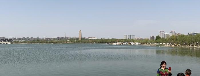 Halbao Park is one of M : понравившиеся места.