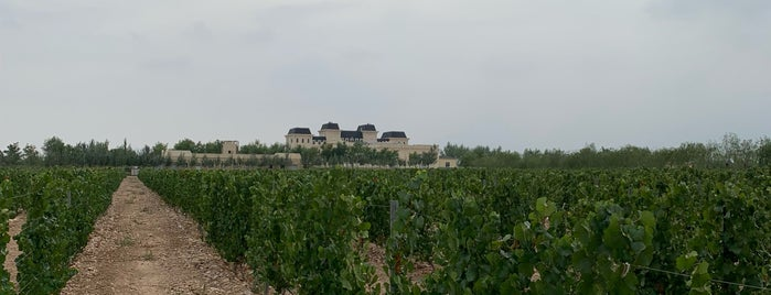 Château Mihope is one of Lugares favoritos de M.
