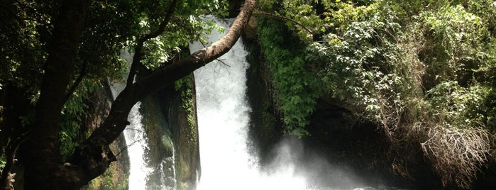 Banias Waterfall is one of Brettさんのお気に入りスポット.