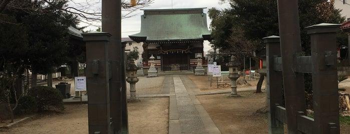 舘氷川神社 is one of 東上線方面.
