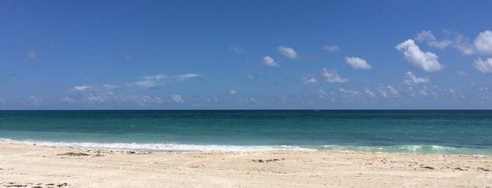 Playa Secreta is one of Puerto Morelos.