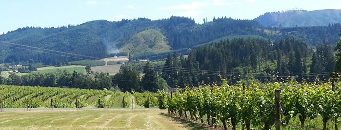 Tualatin Estates Vineyards is one of Susan : понравившиеся места.