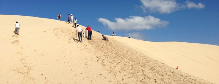Stockton Sand Dunes is one of Aussie Trip.