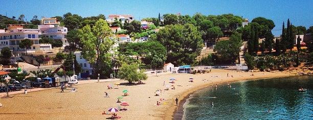 Grifeu is one of Playas de España: Cataluña.