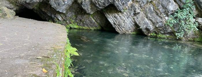 Nacimiento De La Fuentona is one of De turismo por Cantabria.