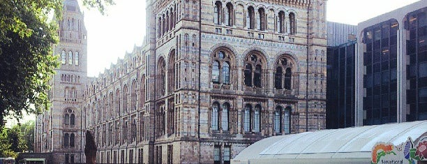Natural History Museum is one of UK & Ireland.