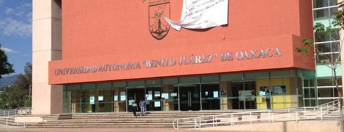 Universidad Autónoma Benito Juárez De Oaxaca (UABJO) is one of Zazil 님이 좋아한 장소.