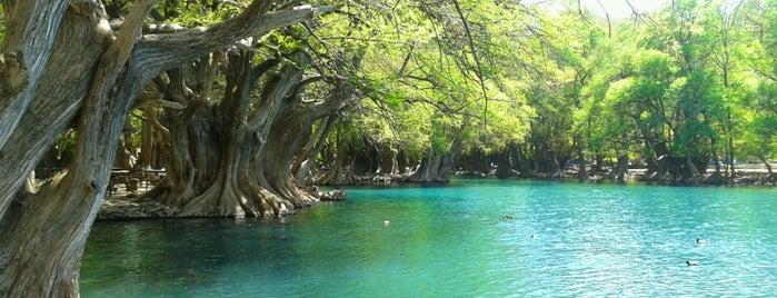 Parque Nacional Lago de Camécuaro is one of Vacations.