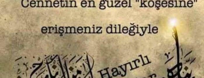 Naturel Doğal ve Butik Ürünler is one of 🇹🇷B@yr@M🇹🇷 : понравившиеся места.