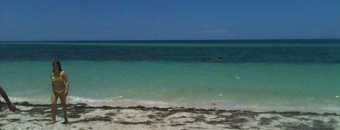 Bahia Honda Key is one of Florida trip 2013.