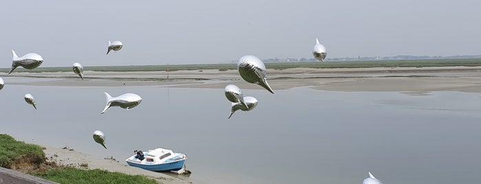 Baie de Somme is one of Orte, die Elien gefallen.