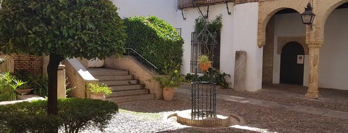 Patio de los Naranjos is one of cordoba.