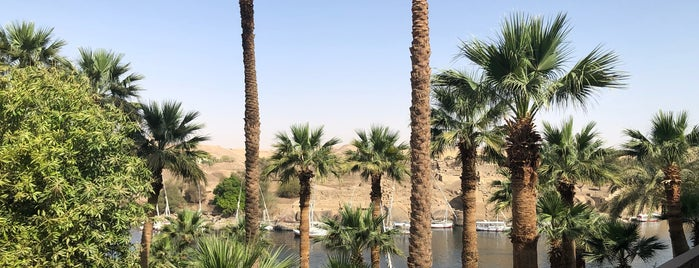 Terrace at Sofitel Aswan is one of Posti salvati di Ahmed.