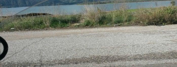 Λίμνη Αμβρακία (Lake Amvrakia) is one of สถานที่ที่ Spiridoula ถูกใจ.