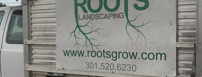 Roots Landscaping is one of Tempat yang Disukai Matt.