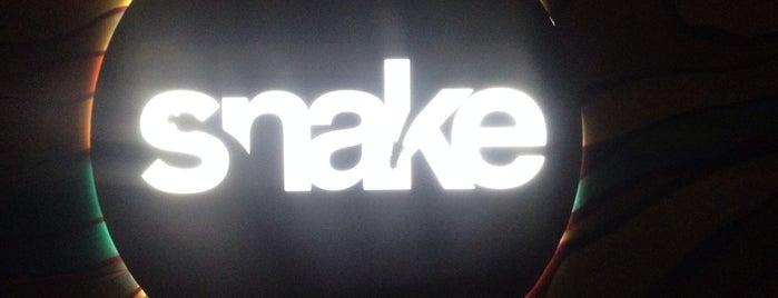SNAKE Night Club is one of Lugares favoritos de Lau.