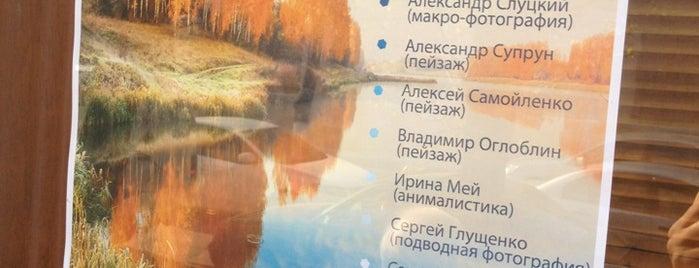 Художній музей is one of สถานที่ที่ Aleksandra ถูกใจ.