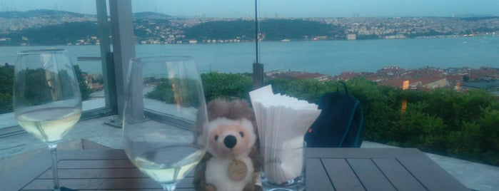 Conrad Istanbul Bosphorus is one of Nite Nite.