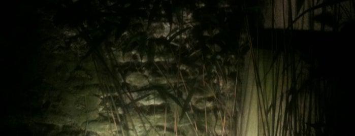 Le Jungle is one of Tempat yang Disukai Jonell.