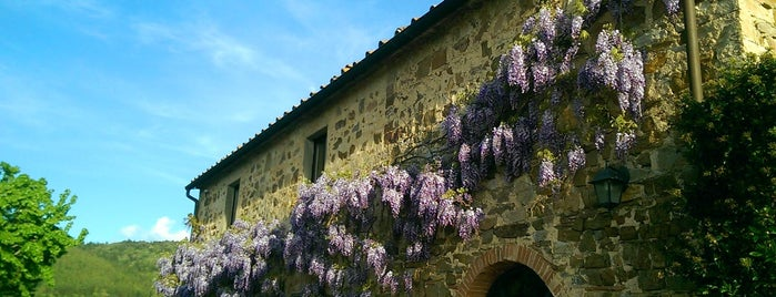 Podere Patrignone is one of 4sq Specials in Tuscany.