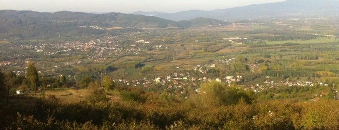 Efteniye is one of Bolu & Düzce.