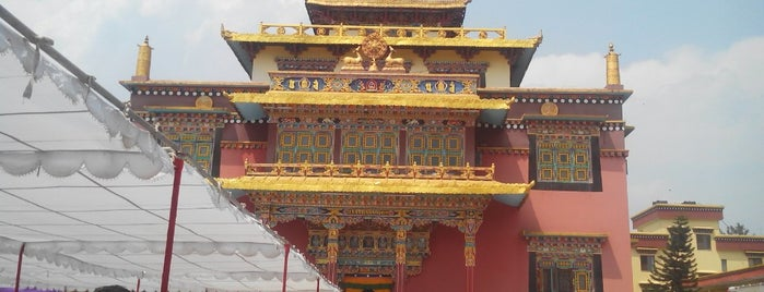 Shechen Monastery Guest House is one of Nepal.