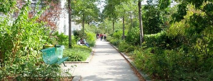 Promenade plantée – La Coulée Verte is one of Paris Places To Visit.