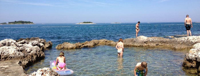 Zelena Laguna Camping is one of Former Yugoslavia/Italy.