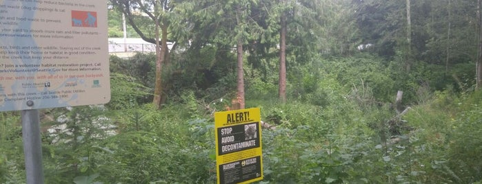 Beaver Pond Natural Area on Thornton Creek is one of Seattle's 400+ Parks [Part 3].