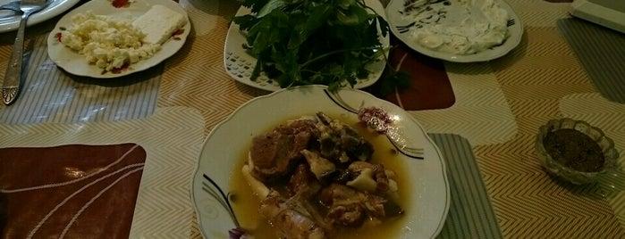 Çinar Restoranı is one of สถานที่ที่ Orkhan ถูกใจ.