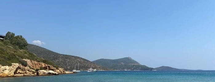 Silent Beach is one of Bodruummm Bodruummm!!.
