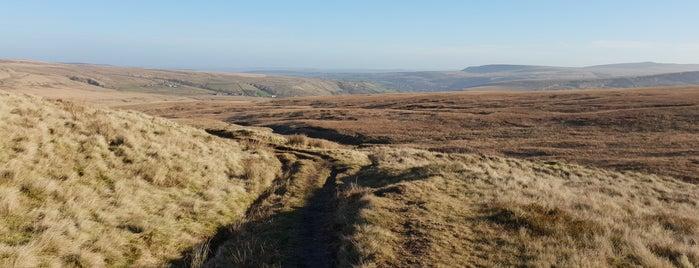Marsden Moor Estate is one of Dog Walking Spots in Yorkshire.