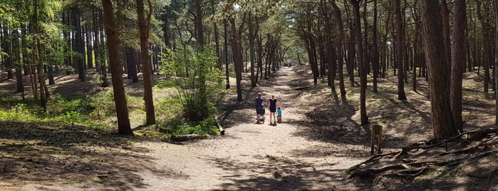 Formby Coastal Park is one of Posti che sono piaciuti a Mathew.