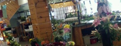 Hartstone Flower & Garden Center is one of icelle 님이 좋아한 장소.