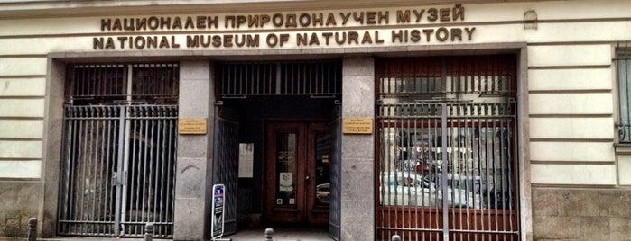 Национален Природонаучен Музей is one of Orte, die Jesse gefallen.