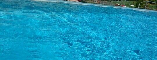 Yüzme Havuzu is one of Mesrure : понравившиеся места.