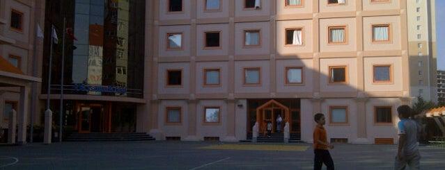 Beylikdüzü Okyanus Koleji is one of Beril'in Beğendiği Mekanlar.